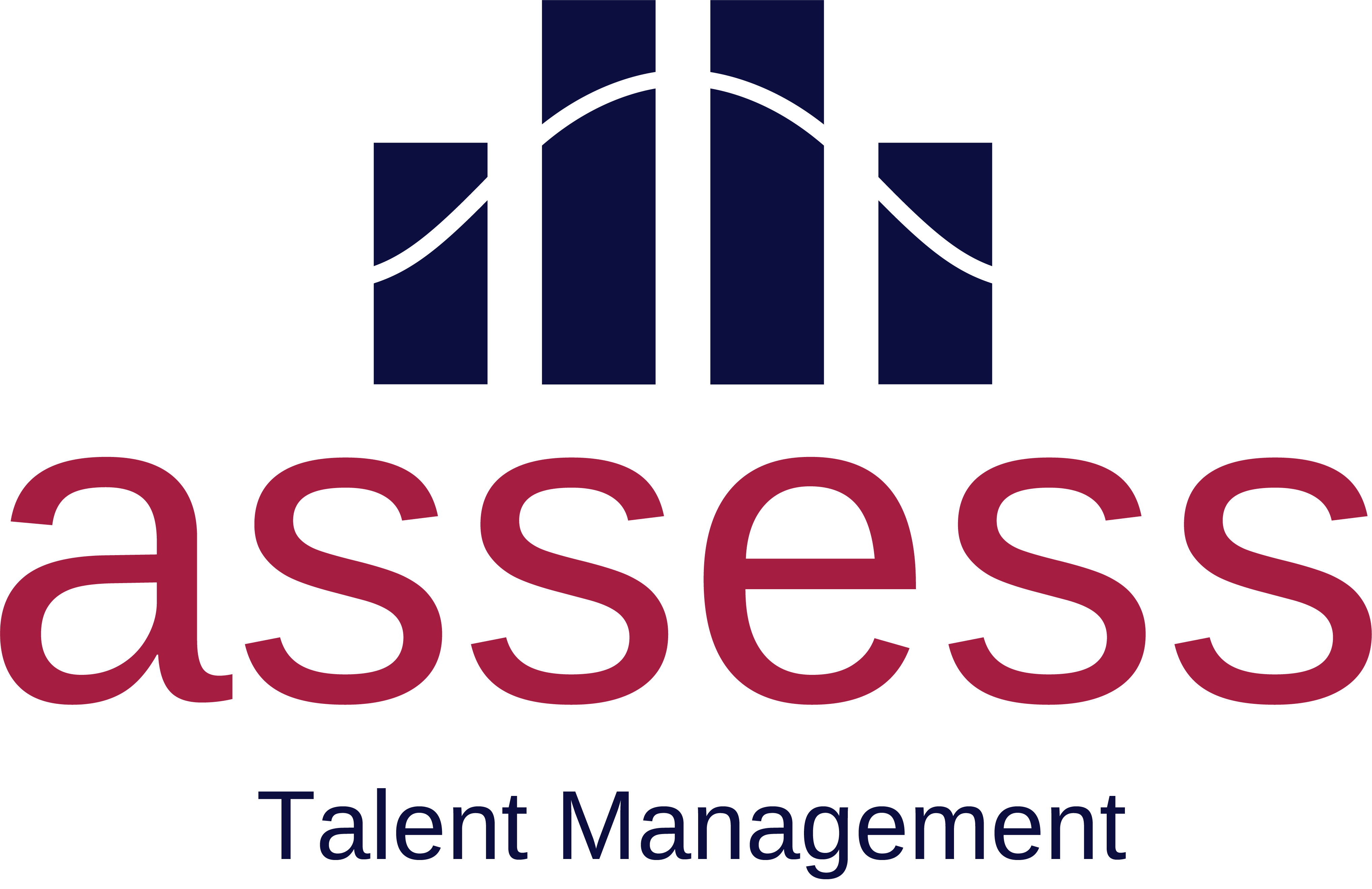 Assess Talent Management